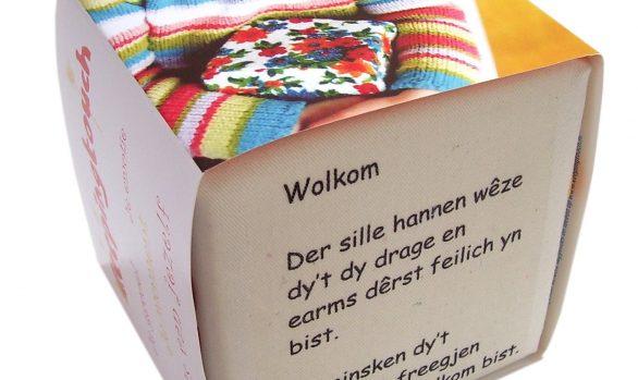 Geboortekubus-Friese tekst
